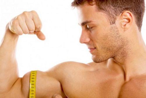 Membangun Otot Hamstring - Tips Untuk Membangun Otot Hamstring Anda yang sering dilupakan